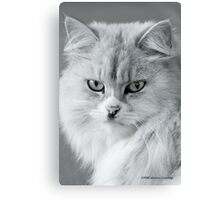 Come Hither... Canvas Print