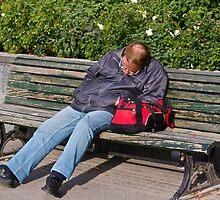 Schlaf gut mein Freund by John Thurgood