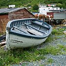 Petty Harbour, Newfoundland by Raymond J Barlow