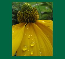 Raindrops on sunflower Womens Fitted T-Shirt