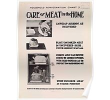 United States Department of Agriculture Poster 0309 Care of Meat in the Home Poster
