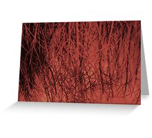 Trees :: Or a broomstick Greeting Card
