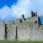 Middleham Castle by WatscapePhoto