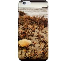 Lonely Shell Along the Shoreline  iPhone Case/Skin