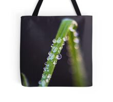 Water drops on a Blade of Grass Tote Bag