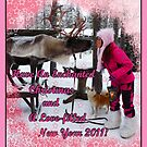 Enchanted Christmas Wishes (with pink border) by KanaShow