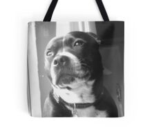 Staffy Bailey Tote Bag