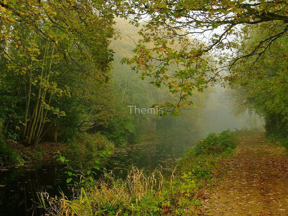 Autumn in Surrey (2) by Themis