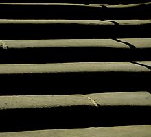 Steps - Whitby Abbey by NUNSandMoses