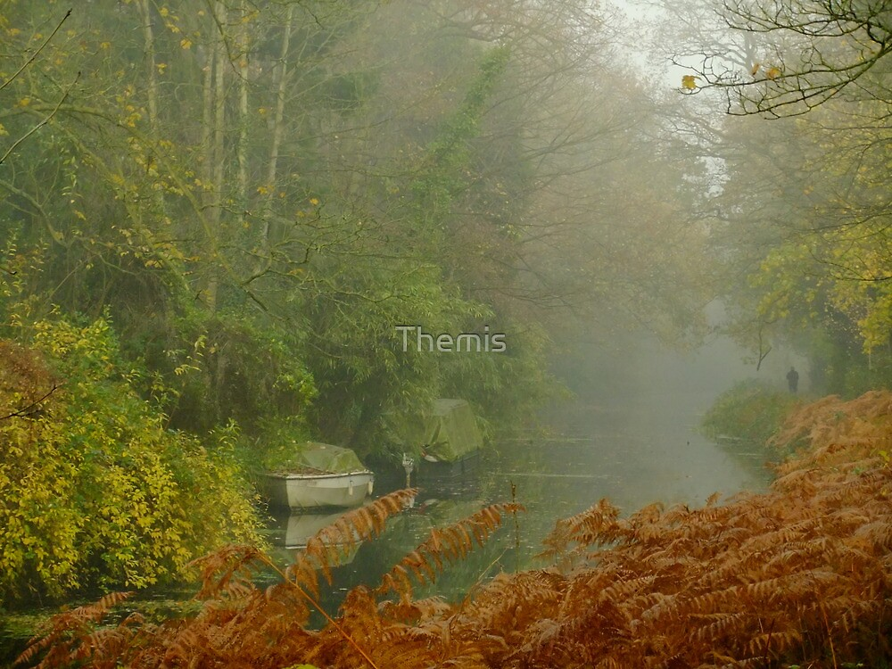 Shadow in the fog by Themis