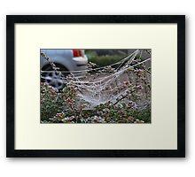 Confused Web Framed Print