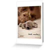 Soul mates Greeting Card