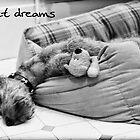 Sweet dreams by Trish  Anderson