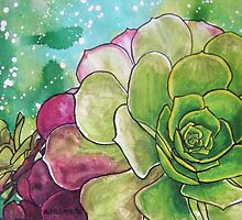 Succulent Rose by Alexandra Felgate
