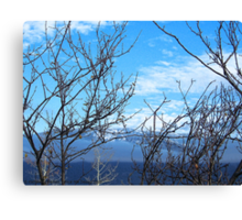 Winter Preview Canvas Print