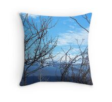 Winter Preview Throw Pillow