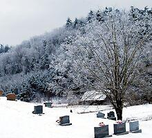 Eternal  Winter by Mattie Bryant