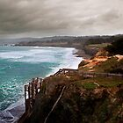 Sea Ranch 13 by Jon Yager