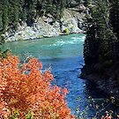 Snake River in the Fall by © Loree McComb