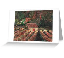 Provence Vineyard Greeting Card