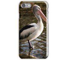 Pelican - Balyang Sanctuary Geelong  iPhone Case/Skin