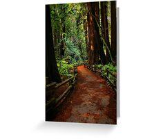 Walk Through Redwoods Greeting Card