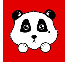 Panda Buddy Photographic Print