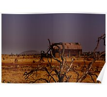 out,outback Poster