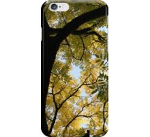Branching Out iPhone Case/Skin