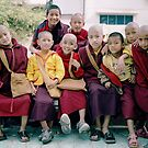 brothers. monastery, northern india by tim buckley | bodhiimages photography