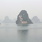 Ha long Bay - Vietnam by lynnehayes
