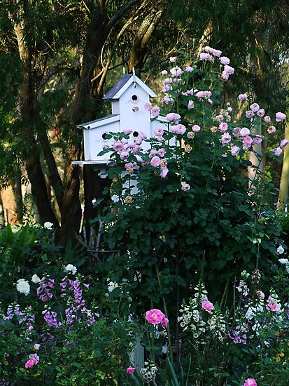 Pink Rose and Birdhouse! by Gabrielle  Lees