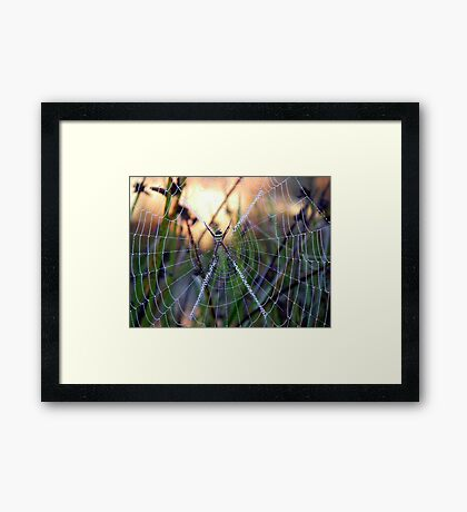 Crystal web Framed Print