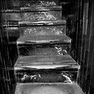 551 Steps by Luke Griffin