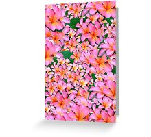 Pink Frangipani Flowers Greeting Card