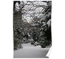 A Snowy Wonderland  Poster
