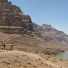 Grand Canyon USA by lynnehayes