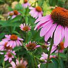 The Garden by Terra 'Sunshine' Gilbert