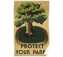 WPA United States Government Work Project Administration Poster 0717 Protect Your Parks Poster