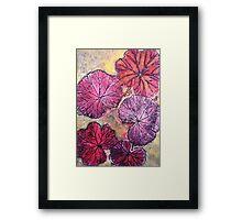 November's Garden 10 - Monoprint Framed Print