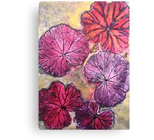 November's Garden 10 - Monoprint Canvas Print