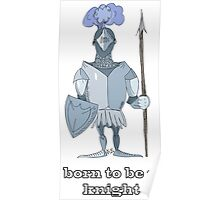 Born to be a knight Poster