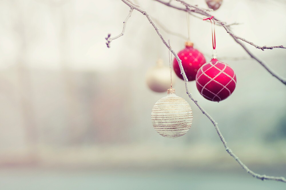 Christmas Ornaments in a Frosty Tree by mariakallin