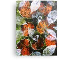 November's Garden 6 - Monoprint Canvas Print