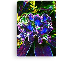 A Psychedelic Rhododendrum Canvas Print