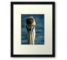 Hey, You ! Framed Print