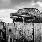 Trade-in by Mick Kupresanin
