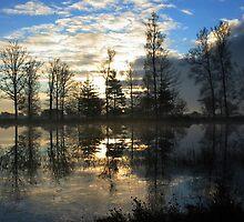 Beautiful Morning by ienemien