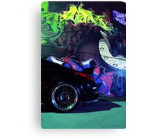 Rear end Canvas Print