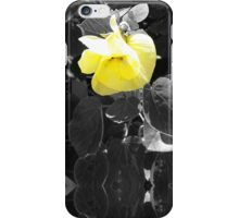 Single Flower (Yellow) - iPhone Case iPhone Case/Skin